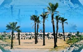 Puerto Banus - Marbella - Costa del Sol - Photos by Frank W. Zumpf